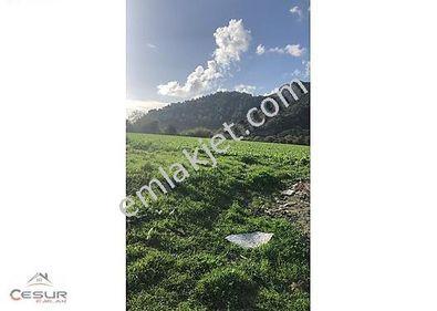 FEVZİYE DE SATILIK 32403m2 İmar İçinde Arazi SK124