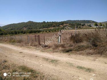 Kestel Gölcük Köyü 4.250m Satılık Tarla