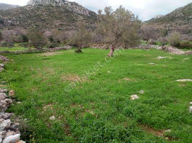 My Gayrimenkul'den Marmaris Söğüt köyü 1350m2 Yatırımlık Tarla