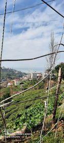 derepazari sandiktas mahallesi satılık arazi