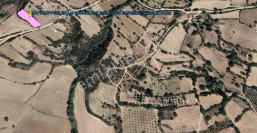 GELİBOLU BAYIRKÖY DE BOĞAZ VE KÖPRÜ MANZARALI 2.044 M KARE TARLA