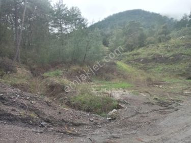 Paşa Emlaktan Dalaman'da Satılık 3220 m2 Müstakil Tapulu Tarla