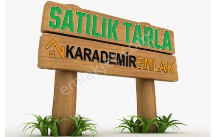Karaman Kazımkarabekir Mecidiye Köyü 8 Dönüm Satılık Tarla