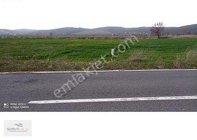 Mecidiye- erikli asfalt yoluna cepheli arazi