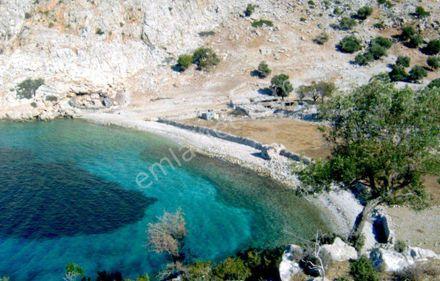Marmaris Taşlıca'da Satılık 32 Dönüm Tarla