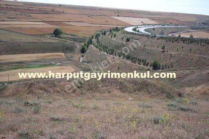 Bursal Yaylabağ'da 2.568m2 Müstakil Tek Tapulu Arsa