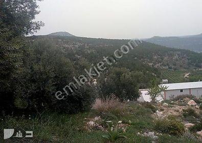 BUCAKLI MAHALLESİ' NDE SATILIK 359 M2 PARSEL