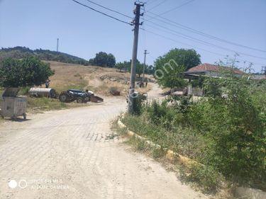 İzmir Torbalı çamlıcada Hortuna emlak satılık köy içi konut arsa