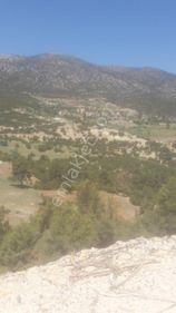 ANTALYA YAZIR GÜZLESİNDE 604m2 arsa içinde müstakil köy evi ı