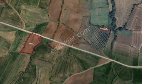 VİZE SERGEN KÖYÜ ASFALT CEPHE 10.000 m2 ARSA