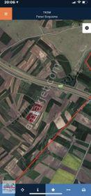 EEGENE BAKIRCA DA SATILIK 6540 m2 TARSA