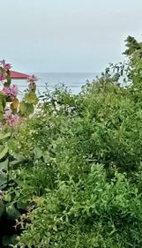 Deniz Gayrimenkul'den Müstakil Bahçeli Daire