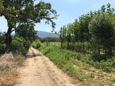ELFİ den Osmangazi Soğanlı Botanik Park Komşu 4000 m2 Tarla