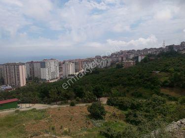 Trabzon konaklar'da satılık arsa