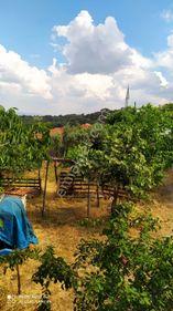 BERGAMA-Çamtepe Mahallesinde SATILIK KÖYEVİ