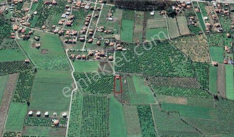 Ortaca Okçular Satılık da 1764 m² Arsa ve Müstakil Ev