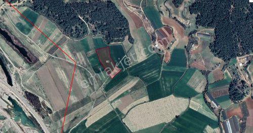 Serik Çatallar'da 12000 m2 Satılık Tarla