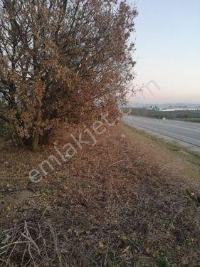 BİGA BALIKLIÇEŞME ANA ASFALT CEPHELİ 350 M2 ARSA