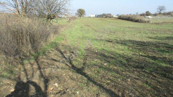 Lapseki Mecidiyeköy'de Satılık Çiftlik İçin Uygun Arazi