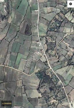 ALTINŞEHİRDEN OSMANCALIDA 3300m2 YOL KENARINDA TARLA