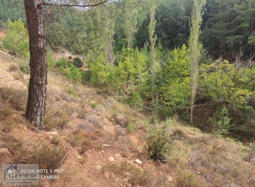 Ege'den Kavak köyü yola cepheli uygun fiyata arazi