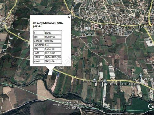 CB CLASS'TAN MUDANYA HASKÖY'DE 5.750 m2 KİRALIK ARAZİ