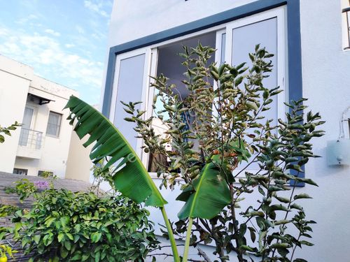 Bodrum Bitez'de ACİL SATILIK 2+1 Bahçe Kat Daire