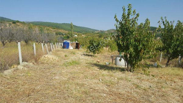 izmir bornova yakaköy'de satılık bahçe