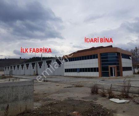 Halkbankası'ndan Satılık  FABRİKA