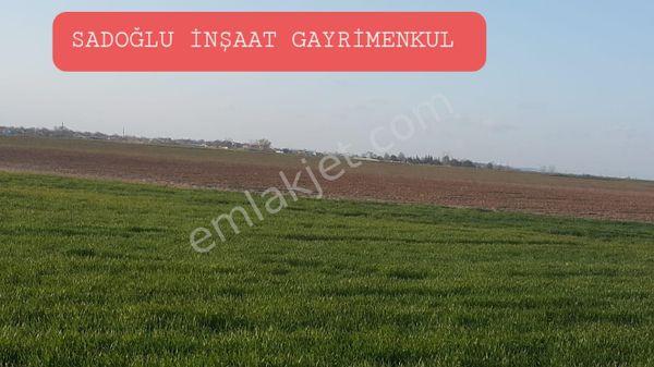 Lüleburgaz Alacaoğlu'nda 4 dönüm 65 bin TL