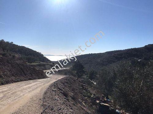 Çanakkale, Yeşilyurt köyünde tünel ağzında, yol cephli 708 m2.