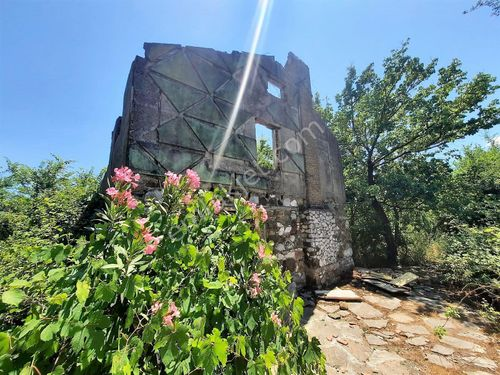 Köyceğiz Toparlarda satılık 20,208 m2 kelepir arazi, eski taş ev