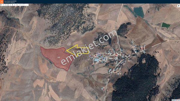 SATILIK TARLA 77.760 M2 ADANA SAİMBEYLİ BEYPINARI MAHALLESİNDE