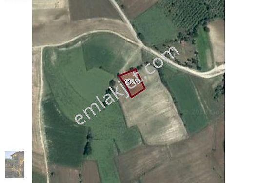 SAKARYA KAYNARCA KERTİLDE 1 035 m2 SATILIK TARLA 55 000 TL