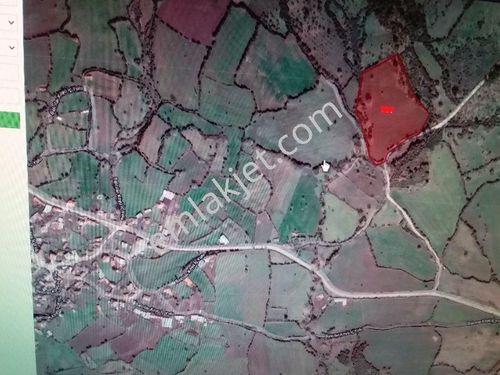 Lapseki'nin köyünde 20.000m2 satılık tarla