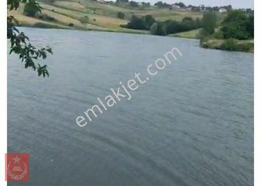 kaynarca Taşolukta göl manzaralı tarla