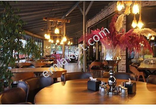 Serdivan Yazlık Bölgesinde Devren Kiralık Cafe-Restoran