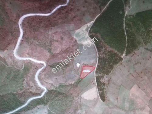 Yenice nin Karadoru köyünde 3 417m2 satılık tarla