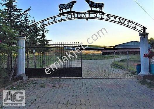 Isparta Satılık Çiftlik Lojmanlı 75 Dönüm 5000m2 Kapalı Alan