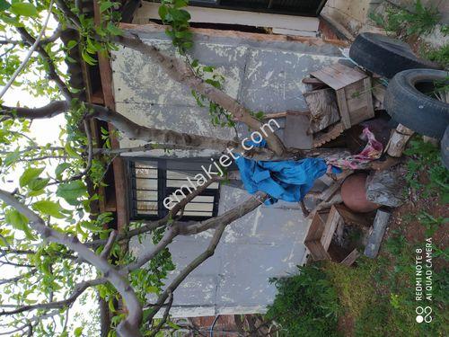 Konya merkez Akören ilçesinde dev gayrimenkul'den satılık bahçe