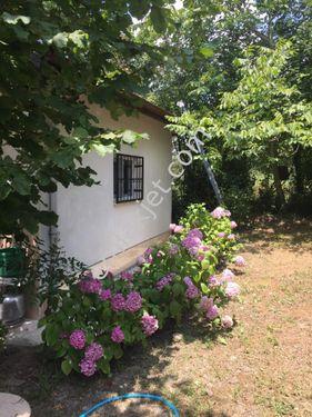 Sapanca Uzunkumda 3100 m2 bahçeli köy evi