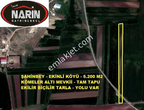 Şahinbey EKİNLİ Köyünde Asfalt üstü tarla elektirik yakın