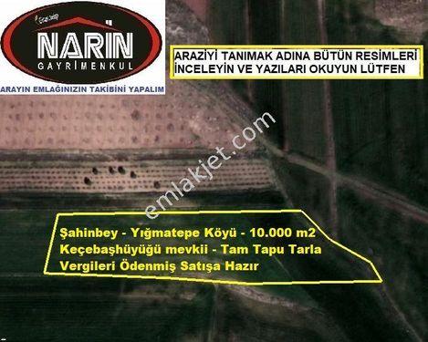 Gaziantep Şahinbey YIĞMATEPE Köyünde Tarıma Elverişli Düz Zeminde