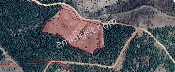 Sahibinden Çivril Somak yatırımlık fırsat acil satılık uygun arazi .
