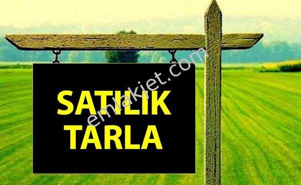 Alanya Fakırcalı Köyü'nde Satılık Tarla