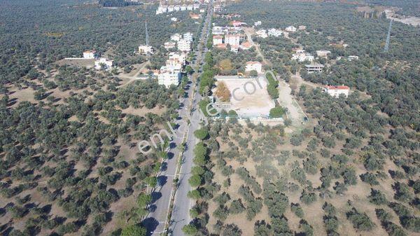 ZEYTİNLİ KÖYÜ ASFALTA 30 ADIM 2,5 KAT YÜZDE 30 İMARLI 800 m2 ARSA