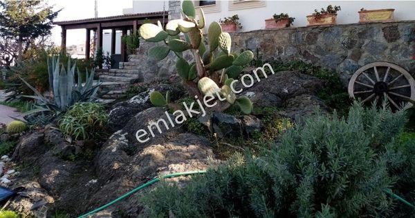 Yalıkavak'ta Deniz Manzaralı Havuzlu Bahçeli Müstakil Özel Villa