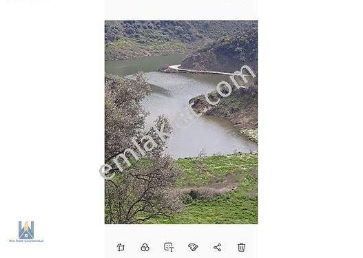 Bayındır'da Baraj Manzaralı Zeytinlik