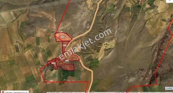 Güvenay-Çorum mecitözünde 173 dönüm yol kenarı satılık Tarla