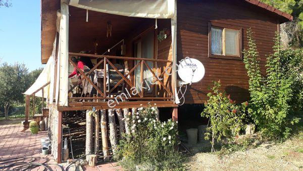 acil satilik 500 m2 arsa içinde köy evi